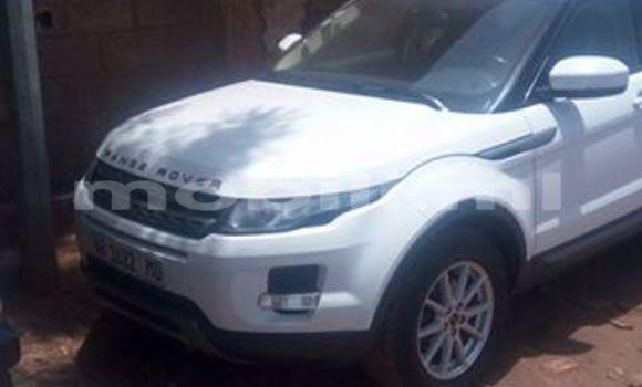 Acheter Voiture Land Rover Range Rover Evoque Blanc à Bamako en Mali